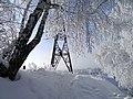 Снегодеревья на фоне снеговышки - panoramio.jpg