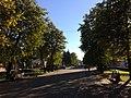 Улица Весенняя между набережной и Драмтеатром.jpg