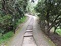 大坑步道 Dakeng Hiking Trail - panoramio.jpg