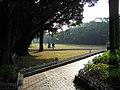 大榕树下 - panoramio.jpg