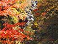 金蔵落としの紅葉 - panoramio.jpg