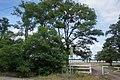 07-233-5021 велике Згоранське озеро.jpg
