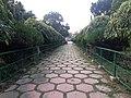 108 Shiva Temple in Bardhaman 10.jpg