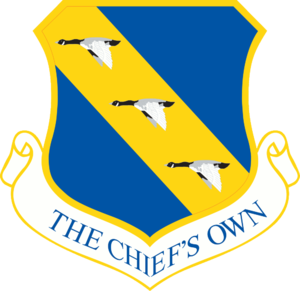 11th Wing - 11th Wing emblem