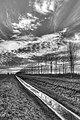 13-56 - Sant'Agata Bolognese (BO) Italy - December 21, 2011 - panoramio.jpg