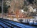1435 mm rail gauge excursion 4871.jpg