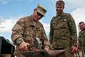 151027 30thmedpao Mtn IN BN 233 Bundeswehr Mules 7 (22387416059).jpg