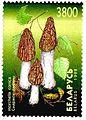 1998. Stamp of Belarus 0287.jpg