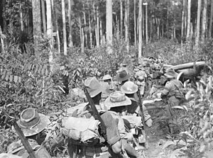 2/3rd Pioneer Battalion (Australia) - Soldiers from the 2/3rd Pioneer Battalion's D Company moving along a track on Tarakan
