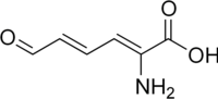2-aminomuconic semialdehyde.png