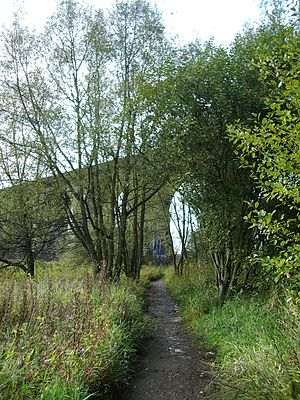 Earlestown - Image: 2004 10 09 Viaduct from valley