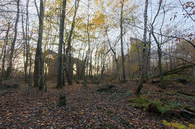 2011-11-11 16-03-59-Puits Arthur-de-Buyer.jpg