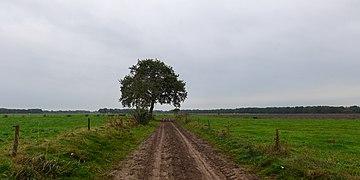 20141014 Kerkweg Yde-Vries Dr NL.jpg