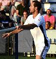 2014 US Open (Tennis) - Tournament - Michael Llodra (15132528402).jpg
