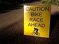 2015-365-255 The Race is On! (21186031310).jpg