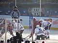 2015 NHL Winter Classic IMG 7996 (16133861450).jpg