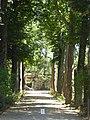 2017-06-20 Giardino di Boboli 40.jpg