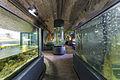 29 aquarium.jpg