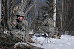 4-25th Spartans conduct Arctic heavy drop operation on sunny Alaskan day 130417-A-ZX807-002.jpg