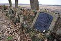 4654viki Kościół w Brzezince - cmentarz. Foto Barbara Maliszewska.jpg