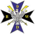 9 BWD DG RSZ odznk pam (2014).png