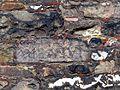 AC Dom Taufkapelle Inschriftenstein.jpg