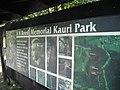 AH Reed Memorial Kauri Park.jpg