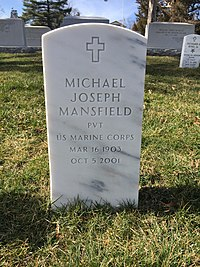 ANCExplorer Michael Joseph Mansfield grave.jpg