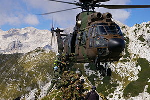 AS AL 532 Cougar-Slovenia.jpg