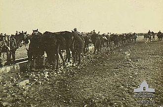 Battle of Tel el Khuweilfe - 12th Light Horse Regiment watering horses at Beersheba