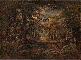 A Vista through Trees: Fontainebleau