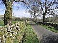 A country road - geograph.org.uk - 399678.jpg