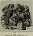 A popular guide to minerals - with chapters on the Bement Collection of minerals in the American Museum of Natural History, and the development of mineralogy (1912) (14778211085).jpg