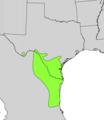 Acacia rigidula range map.png