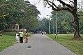 Acharya Jagadish Chandra Bose Indian Botanic Garden - Howrah 2011-02-20 1677.JPG
