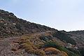 Aegina - view 13.jpg