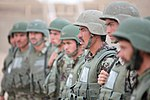 Afghan National Army soldiers put new learned skills to the test during final training exercise 140331-M-PF875-001.jpg