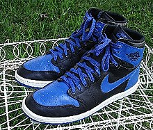 A pair of Nike Air Jordan I basketball shoes