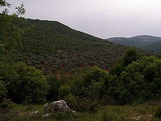Ajloun - Image: Ajlun Green 02