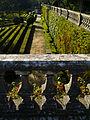 Ajuda botánico 19.jpg