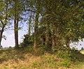 Albairate - Cascina Tosa - panoramio (4).jpg