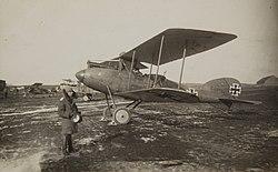 Albatros C.XII.jpg