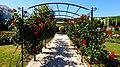 Albena, Bulgaria - panoramio (6).jpg