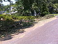 Alexandria Storm, August 2010 (4872214803).jpg