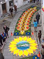 Alfombras florales del Corpus Christi en Castropol.JPG