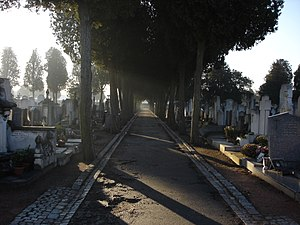 Guillotière Cemetery - Row number 3 in the new cemetery