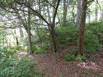 Alloway Mote - The mote hill and site of the ditch.