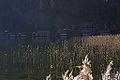 Altausseersee 79271 2014-11-15.JPG
