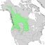Amelanchier alnifolia range map 1.png