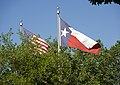 American and Texas flags wave above the treetops. (25112173375).jpg